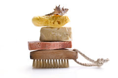 Sponge shell soap Stock Image