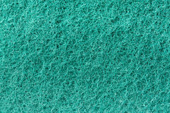 Sponge surface Stock Photos