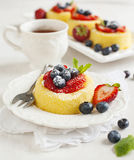 Sponge tart with berries Stock Photos