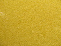Sponge texture royalty free stock images