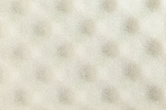 Sponge texture Royalty Free Stock Photography