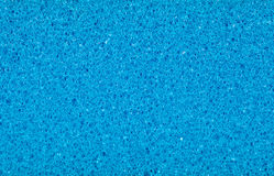 Sponge texture and background Royalty Free Stock Photos