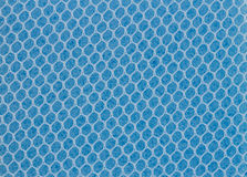 Sponge texture. Royalty Free Stock Image