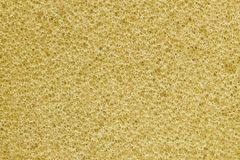 Sponge texture for pattern and background Stock Photos