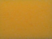 Sponge yellow Stock Image