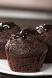 Spongecake or muffin with chocolate sauce Stock Images