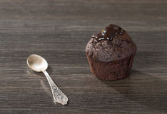 Spongecake or muffin with chocolate sauce. On wooden beckground Royalty Free Stock Photography