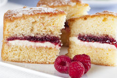 Spongecake and Raspberries Royalty Free Stock Photography