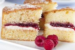 Spongecake and Raspberries Royalty Free Stock Photography