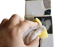 Spongecleaning Stock Photos