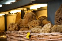 Sponges. Organic sponges in baskets, displayed on the shelves of a small Cretan shop Royalty Free Stock Image