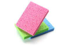 Sponges Stock Photo