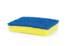 Sponges Stock Photography