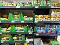 Sponges for dishwashing kitchen Stock Photography