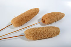 Sponges on Sticks. Closeup of three decorative dried sponges on sticks.  White surface Stock Photography