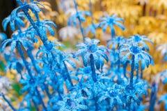 Spongewood ha fatto i fiori colorati artificiali Immagini Stock Libere da Diritti