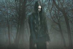 Spook in de mist Stock Foto