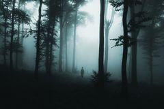 Spook in de mist in donker griezelig hout royalty-vrije stock afbeeldingen