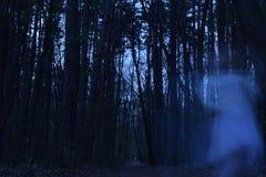 Spook die een achtervolgde dans in het bos dansen Stock Foto