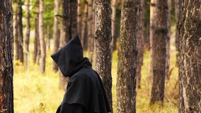 Spook in het hout stock videobeelden