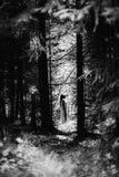 Spook met een wit spookblad wordt behandeld op een landelijke weg die Korrelig geweven beeld royalty-vrije stock foto