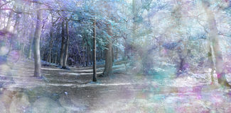 Spooky Blue Fantasy Forest Stock Photo