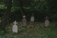 Spooky cemetery in the forest Royalty Free Stock Photo