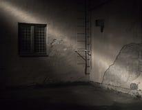 Spooky dark back yard Royalty Free Stock Photography