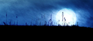 Spooky Dark Landscape. Spooky Dark Silhouette with Big Bright Moon Stock Photos