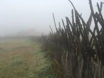 Spooky fencing stock photos