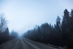 Spooky Fog and Bad Visibility on a Rural Road in Forest. During Winter Royalty Free Stock Photos