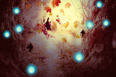 Spooky Forest and Fairy. Halloween night background with spooky forest trees and fairy in fog Royalty Free Stock Image