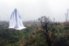 A spooky ghostly figure standing in the countryside on a foggy winters day.  stock photo