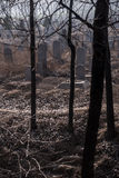 Spooky graveyard. A misty haze over a creepy cemetery in Henan, China Stock Photography