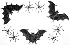 Spooky halloween border image with toy vampire bats and spiders. Black and white photograph of fun scary novelty toys Stock Photos