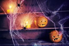Spooky Halloween jack-o-lanterns and spiders royalty free stock photography