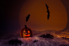 Spooky halloween night. Halloween pumpkin, and many flying bats on abstract background with big moon and spiders Royalty Free Stock Images