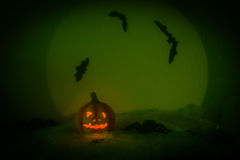Spooky halloween night. Halloween pumpkin, and many flying bats on abstract background with big moon and spiders Royalty Free Stock Photo