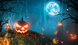 Spooky halloween pumpkins in dark forest royalty free stock photo