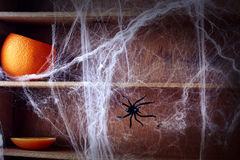 Spooky Halloween spider web background Royalty Free Stock Photo