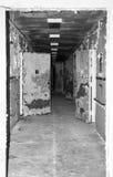 Spooky Hallway Stock Photos