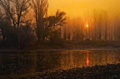 Spooky landscape - forest, river and sun stock images