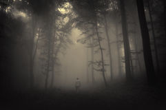 Spooky landscape with man walking in dark forest Stock Photos