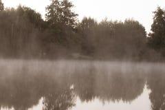 Spooky-looking lake with fog. Location: Germany, North Rhine-Westphalia, Pröbstingsee stock images