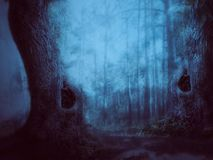 Mysterious forest scene Stock Photos