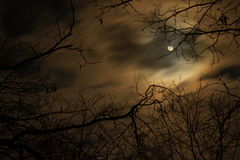 Spooky Nights. The moon surrounded by eerie clouds Stock Images