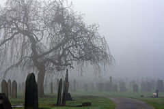 Spooky old cemetery on a foggy cold day Royalty Free Stock Photography
