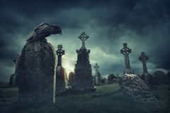 Spooky old graveyard and a bird. At night Royalty Free Stock Photography