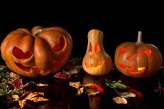 Spooky pumpkin halloween Stock Images