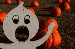 Spooky Pumpkin Patch Stock Photos